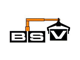 bsv-v2